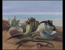 Natura Morta marina