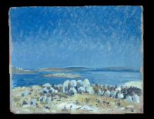 Saldhana Bay con le rocce