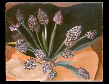Natura Morta con orchidee selvatiche
